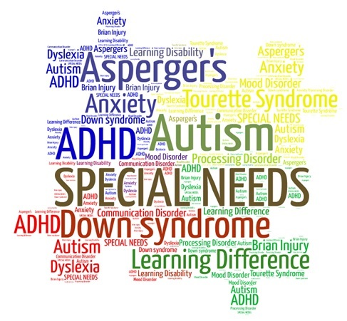 Special Education Lawyer in Orlando